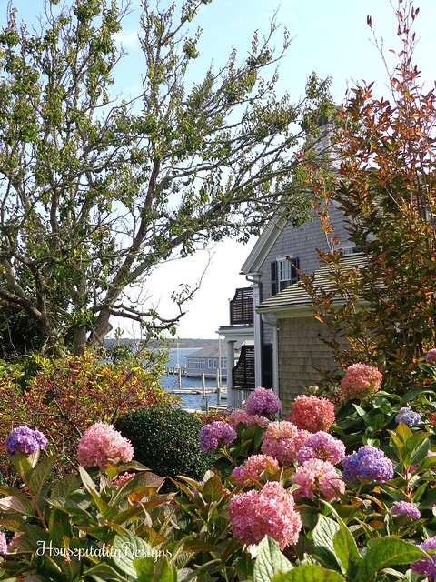 Martha's Vineyard - Hydrangea Garden - Water View - Housepitality Desisgns