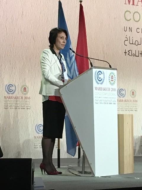COP22, Marrakech November 2016
