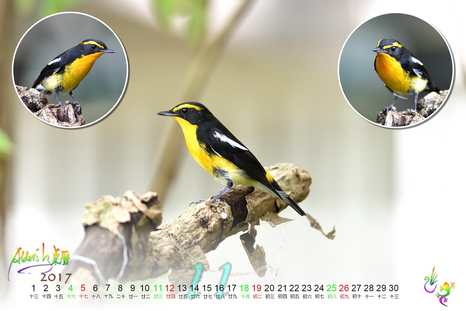 Calendar_03alder_11