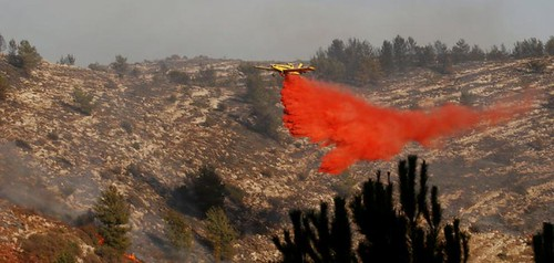 Officials blame arson for Israel fires