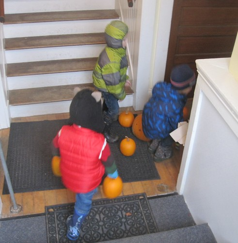 bringing in the pumpkins from Santa's Village