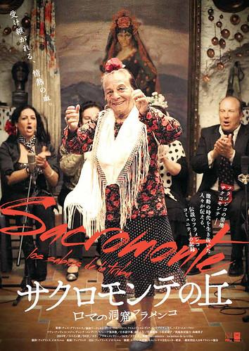 映画『サクロモンテの丘~ロマの洞窟フラメンコ』