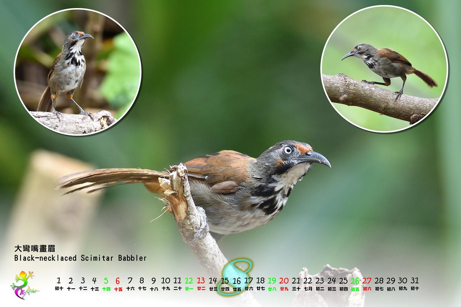 Calendar2017_2_09