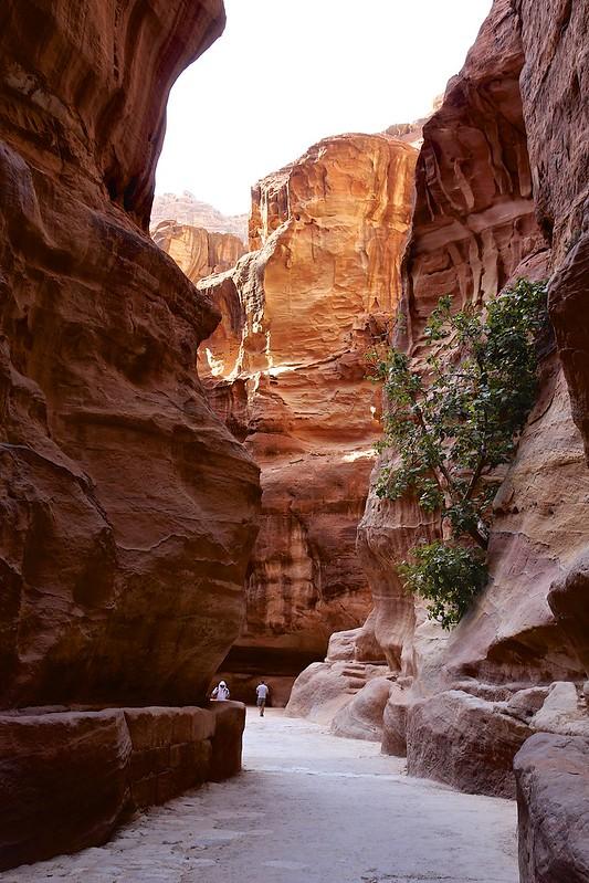 Kadonnut kaupunki Petra