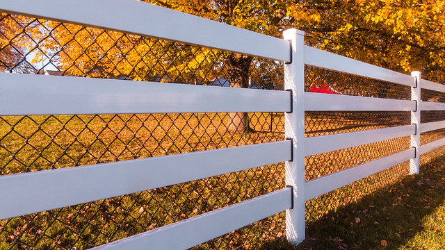 Sunsets on Fence Line