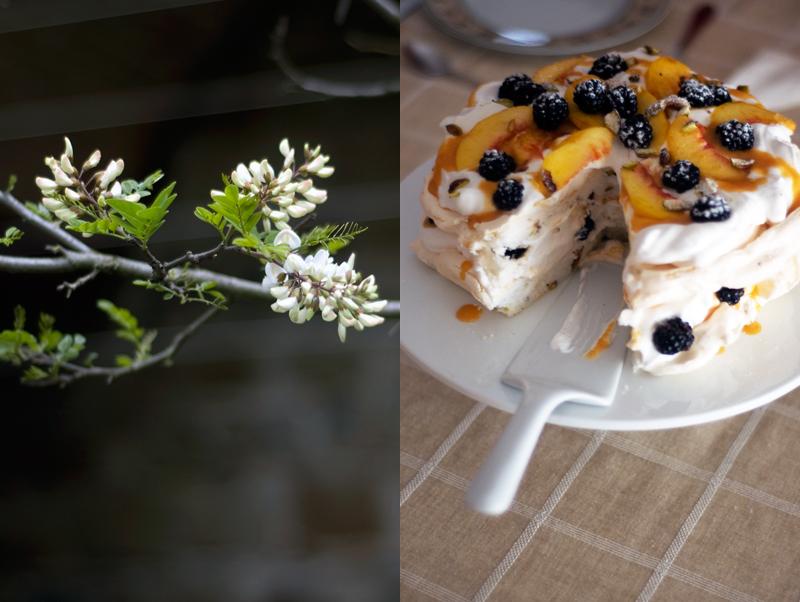 Pavlova de pistácio com amoras e curd de papaia