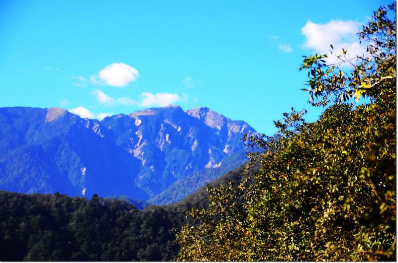 焦土山展望點西南眺奇萊主山北峰
