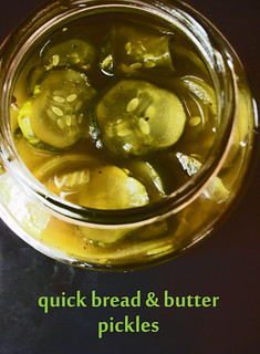 quick bread and butter pickles | by awhiskandaspoon