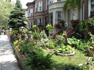 Greenest Block in Brooklyn 2011 | by Brooklyn Botanic Garden