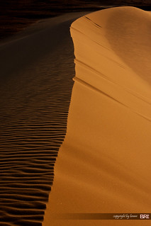 dunes - explored | by alamond