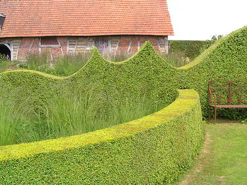 La haie de buis taill en vagues le jardin plume auzou for Auzouville sur ry jardin plume