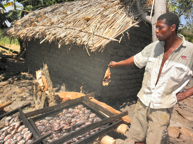 Fish smoking at a temporary shelter, Chisi Island on Lake Chilwa, Zomba, Malawi. Photo by Asafu Chijere, 2010