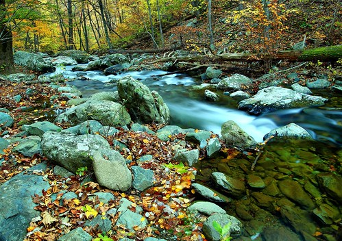 Autumn flowing forest river | by ForestWander.com