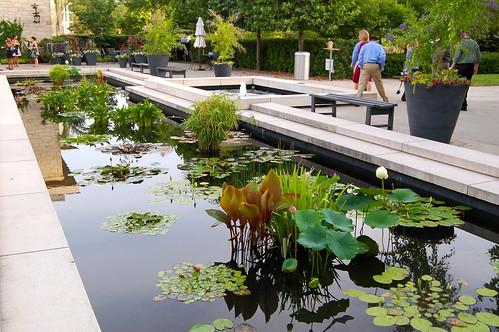 Cleveland Botanical Gardens Gloria Flickr