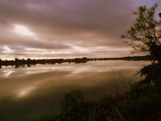 Hornsby Pond 2 | by amay465