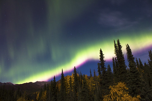 Northern Lights and the Big Dipper Over Denali | by Critter Seeker