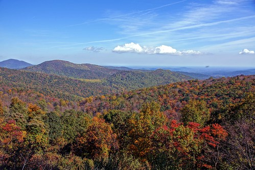 Fall color on Skyland Drive, Shenandoah National Park, Virginia - 1