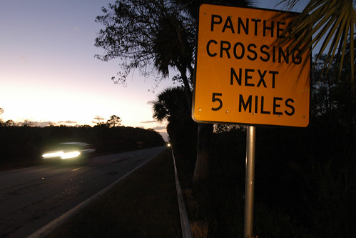 panther crossing sign | by MyFWCmedia
