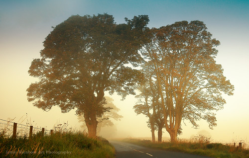 Twilight Guardians. Misty Roads of Scotland (Explored)