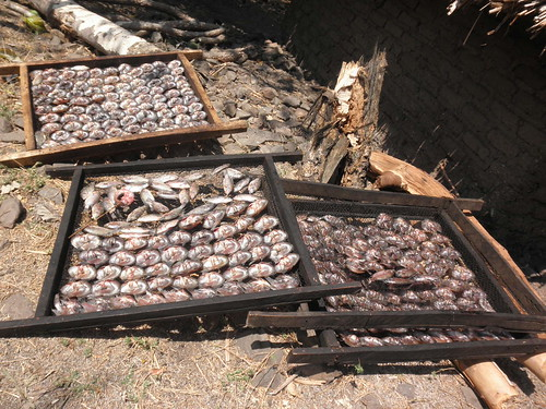 Fish smoking at Chisi Island on Lake Chilwa, Zomba, Malawi. Photo by Asafu Chijere, 2010