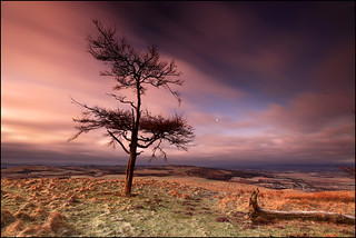 Moonset on Kinpurney Hill | by angus clyne