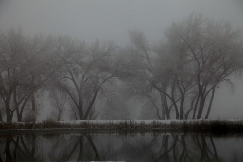Reflections and Fog | by ptwiz1