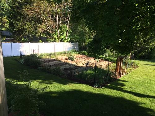 Looking forward to a summer garden