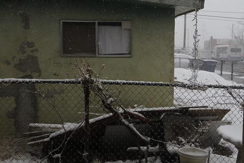 The Haunted House Next Door So It Finally Snows In El