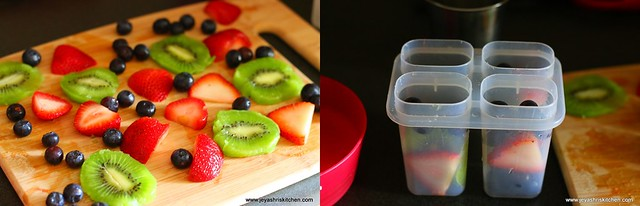 fruit popsicle 1