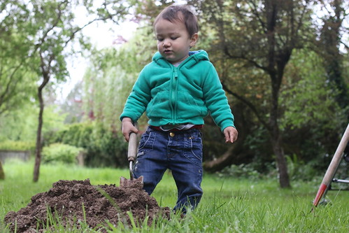 Trowel-wielding toddler