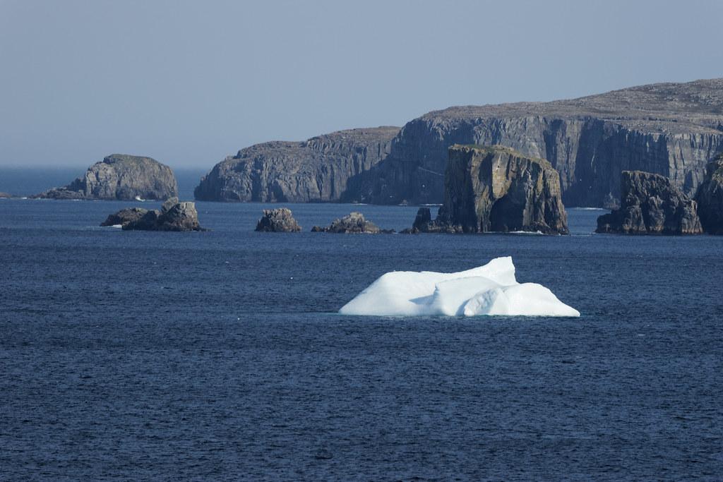 Iceberg Near Bonavista