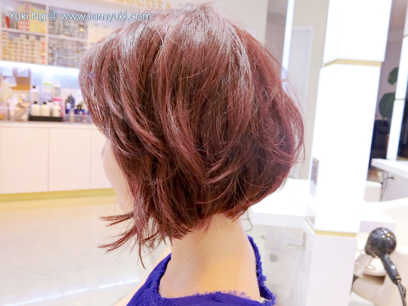 Europe KENJO korean Hair Salon 살롱ok CIMG0976 05Yuki Ng undercut