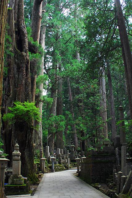 Okunoin Cemetery, Koya-San, Japan