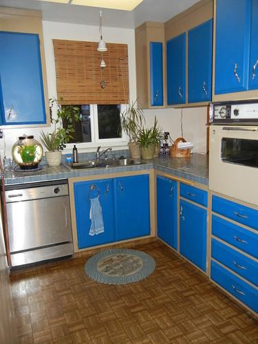 Galley Kitchen Cabinets Photos