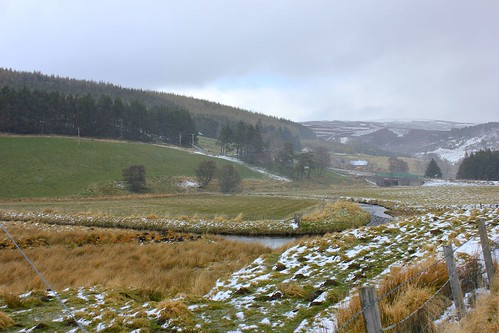 View from parking lot-Cairngorms National Park