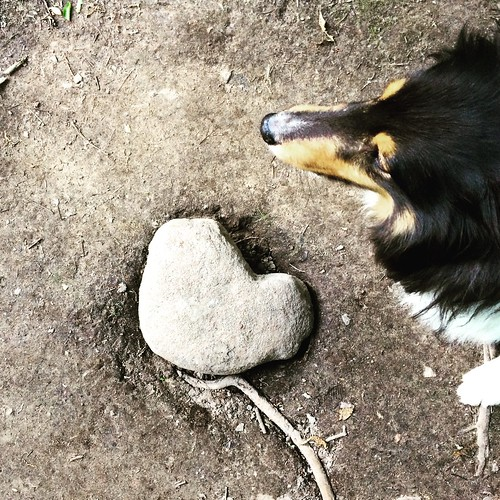 Jasper, my heart