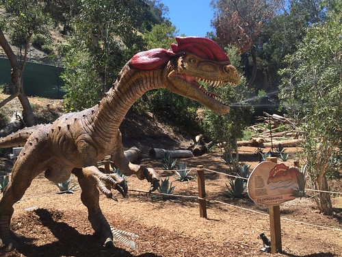 Dinosaurs at the zoo