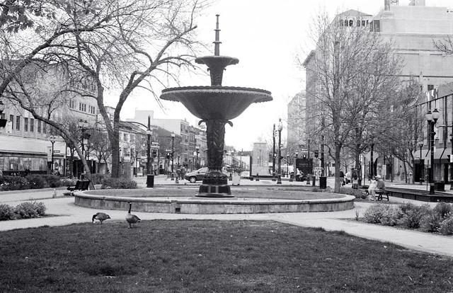 Gore Fountain II