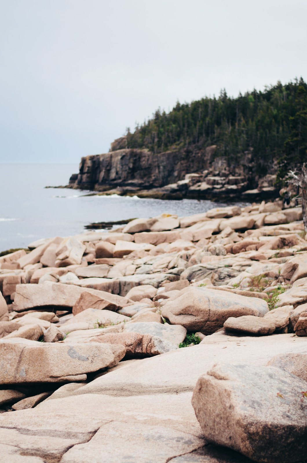 The rocks in Acadia Maine are unbelievable // on juliettelaura.blogspot.com