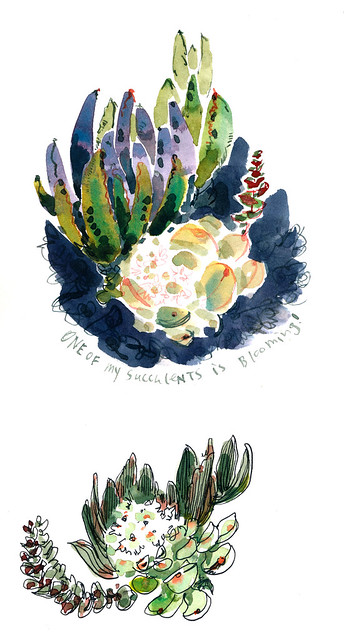 Sketchbook #96: Report from my Little Garden
