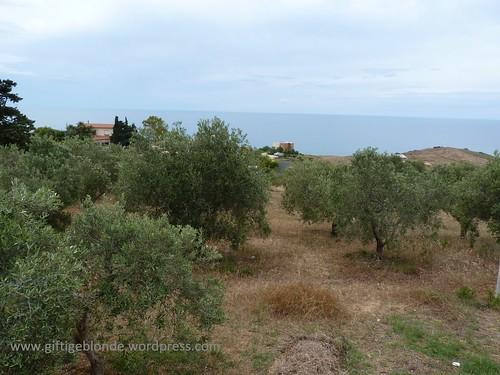 Fahrt von Palermo nach Sciacca