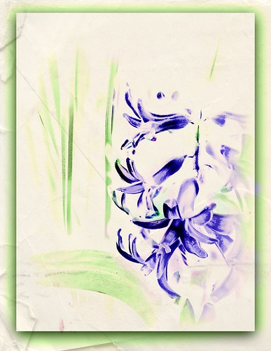 Hyacinth | by Orchids love rainwater