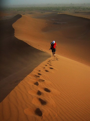 Feeling the freedom in the Sahara's dunes | by Nico_*