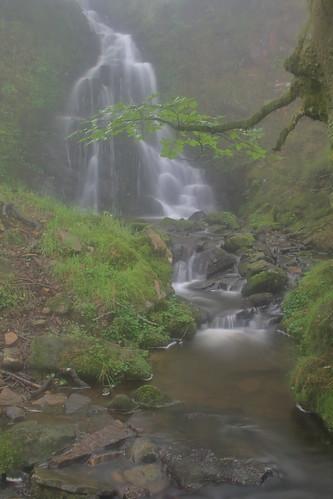 Parque natural de #Gorbeia #Orozko #DePaseoConLarri #Flickr -093
