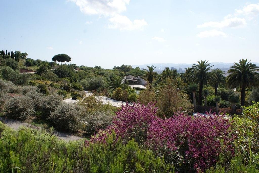 Vue sur le jardin botanique de Barcelone sur la colline de Montjuic.