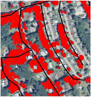 Map showing proximity trees (red) tall enough to strike power lines (black lines). Image by Jason Parent.