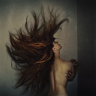 reactions in the prison cell | by brookeshaden