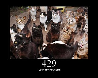 429 - Too Many Requests | by GirlieMac