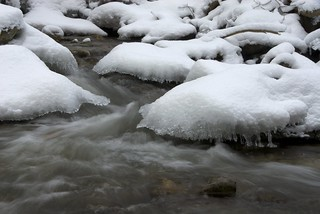 29/365 : Snow Capped Brook. | by Gregory Pleau