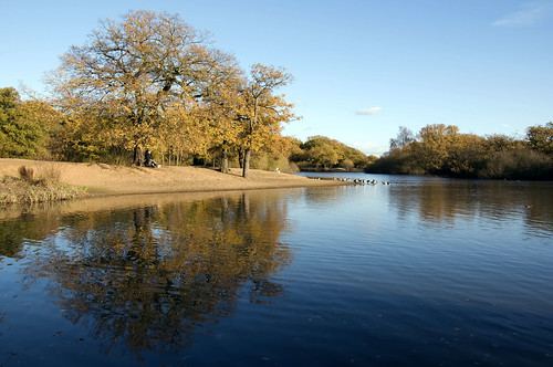 Autumn Colours at Hollow Pond Leytonstone London | by Dick Bulch
